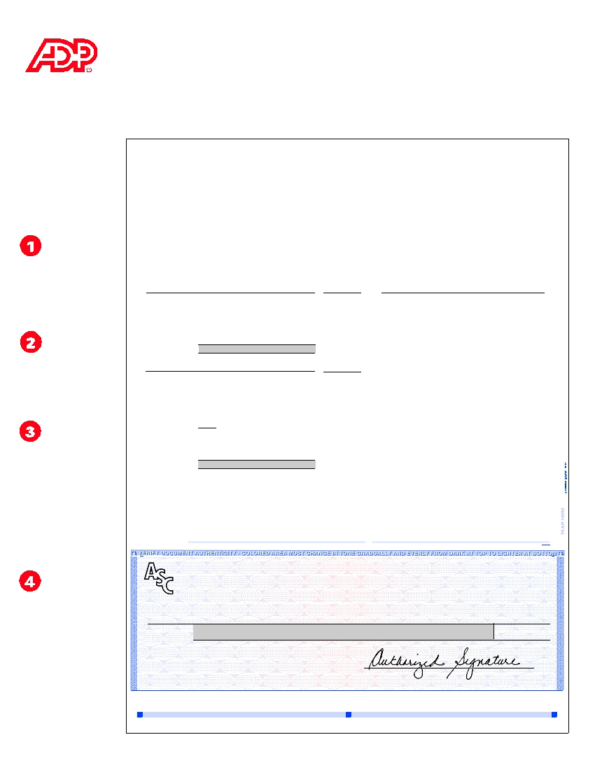 adp pay stub template .
