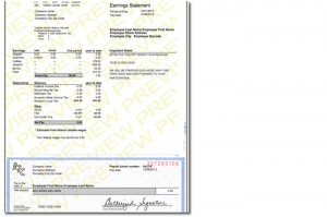 Modern-Paystub-template - PayCheck Stub Online .com