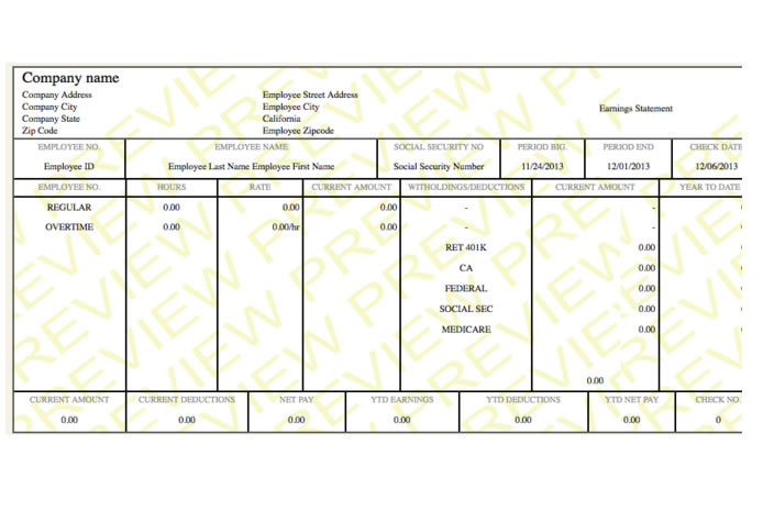 neat paystub paycheck template paycheck stub online. Black Bedroom Furniture Sets. Home Design Ideas